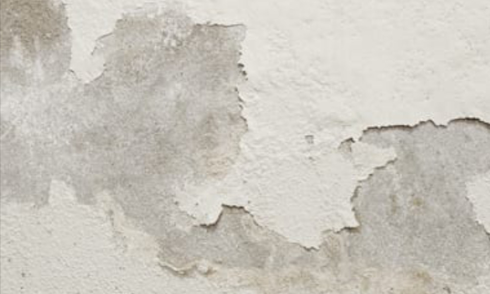 rising-damp-protect